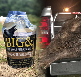Big & J Hog Attractants Strike Again